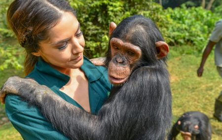 Ngamba Chimps Island and UWEC Zoo Behind Scenes