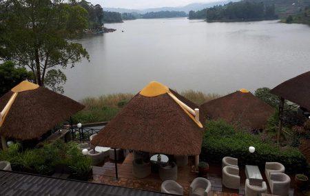 birdnest lodge bunyonyi uganda