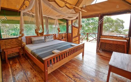 the Bush Lodge in Queen Elizabeth Park Uganda