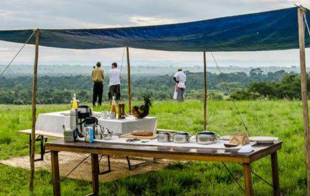 Uganda's Gorillas & Wildlife Adventure